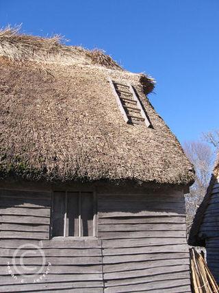 Roofladder