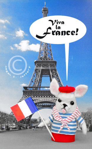 Francoisflag1