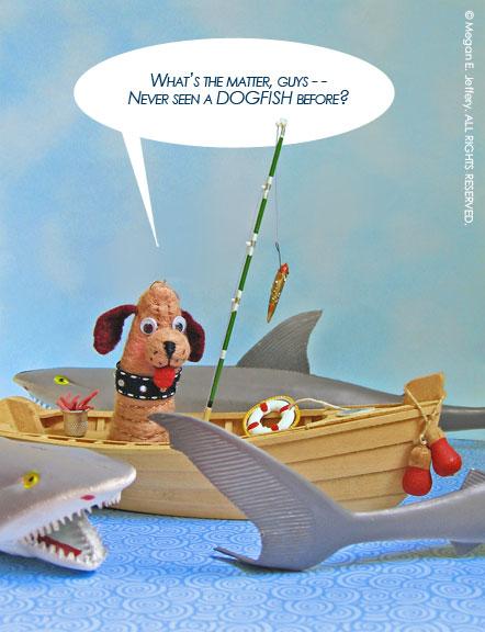 Dogfish6