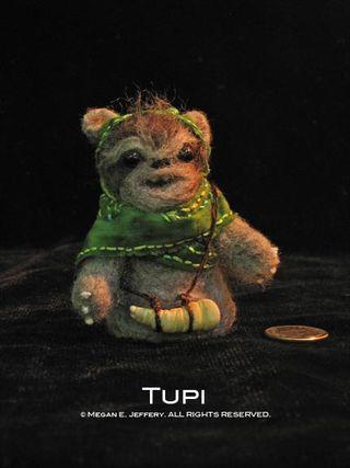 Tupi3