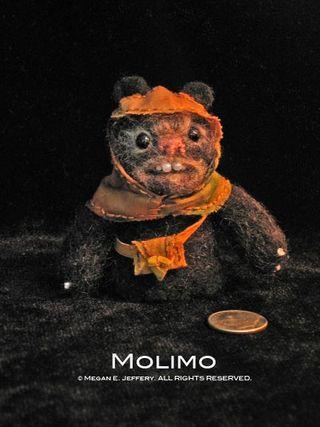 Molimo1