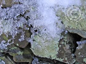 Icenlichen