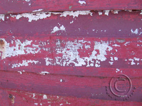 Redsheddetail