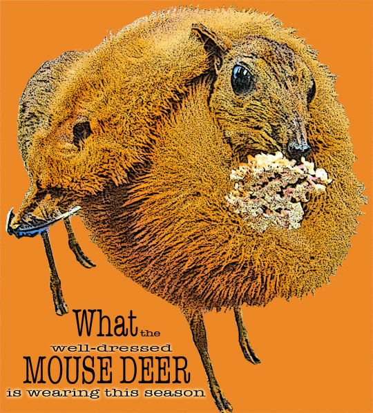 Deermouse2