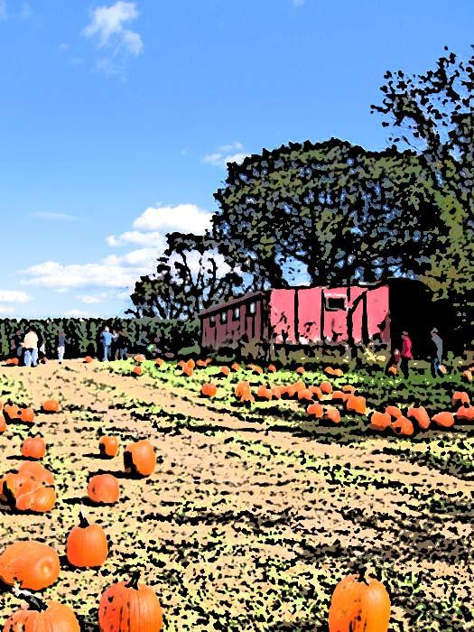 Pumpkinhouse2_1